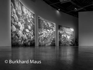 Arno Gisinger, © Burkhard Maus