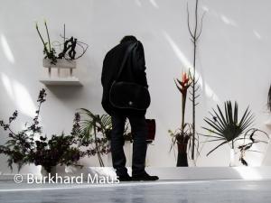 """Camille Henrot, """"Est-il possible d'être revolutionaire et d'aimer les fleurs?"""" (détail), Palais de Tokyo, Paris"""