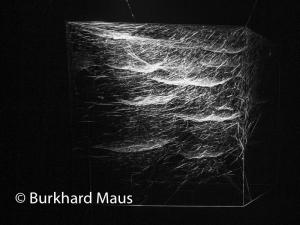 Tomás Saraceno, © Burkhard Maus