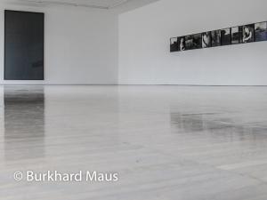 Gerhard Richter, Michael Schmidt