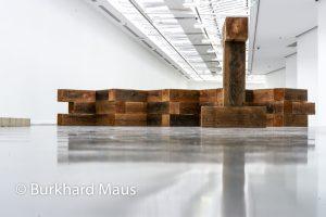 Carl ALa sculpture comme lieu, 1958-2010ndre, Musée d'Art moderne de la Ville de Paris, Paris