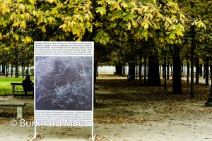 Ignasi Aballí - Jardin des Tuileries / La Foire Internationale d'Art Contemporain