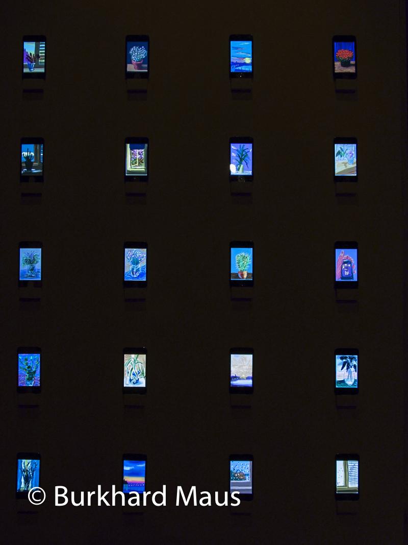 David Hockney, Fleurs fraîches Dessins sur iPhone et iPad, (détail), Fondation Pierre Bergé - Yves Saint Laurent,Paris