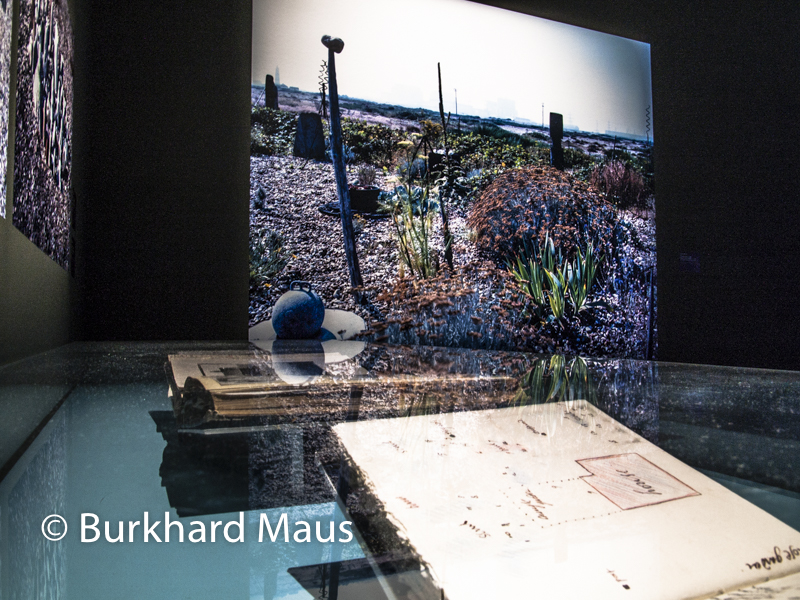 "Keith Collins, ""Le jardin de Derek Jarman"" (m.), Centre Pompidou-Metz"
