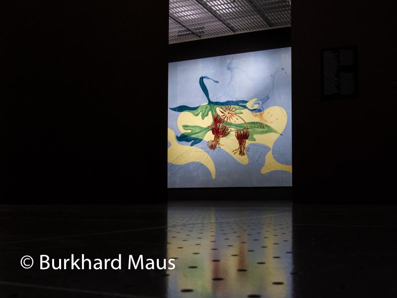 """Max Ernst, """"pétales et jardin de la nymphe Ancolie"""", Centre Pompidou-Metz"""