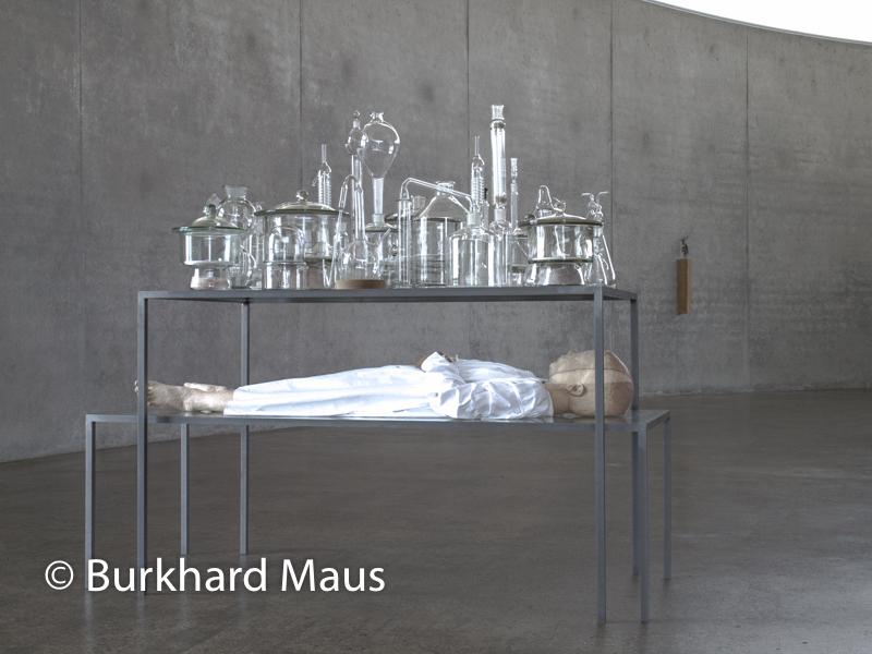 """Paloma Varga Weisz, """"Still Life"""" (l.), """"Hirsch, stehend"""" (r.), Skulpturenhalle / Thomas Schütte Stiftung"""