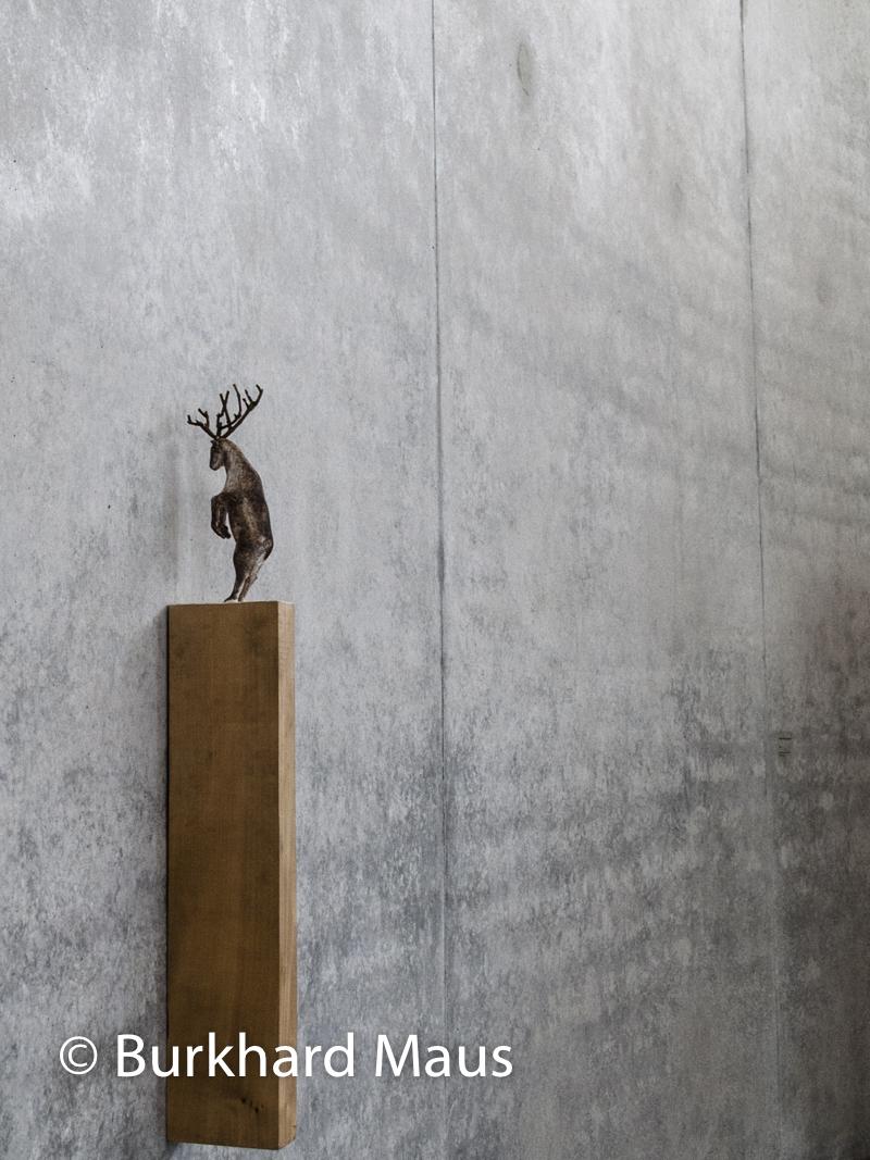 """Paloma Varga Weisz, """"Hirsch, stehend"""", Skulpturenhalle / Thomas Schütte Stiftung"""