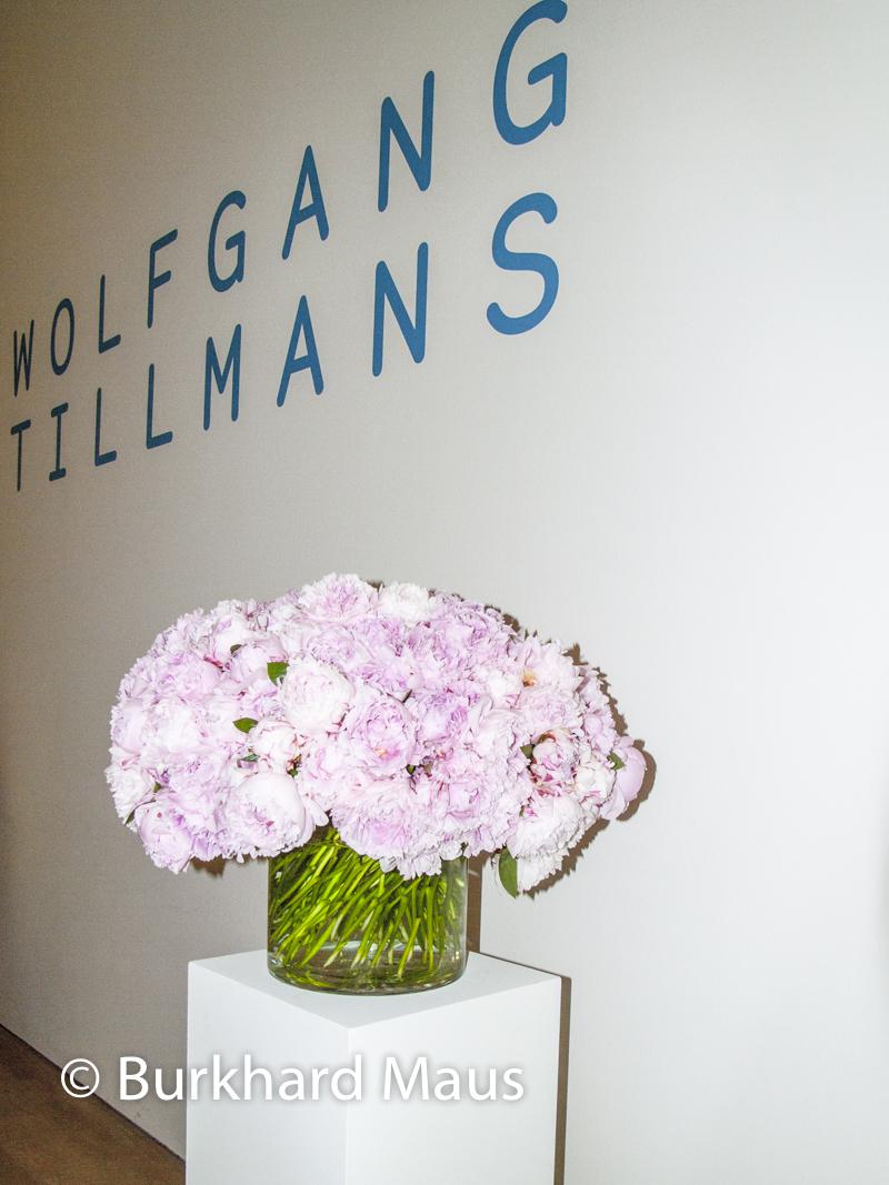 Wolfgang Tillmans, Fondation Beyeler