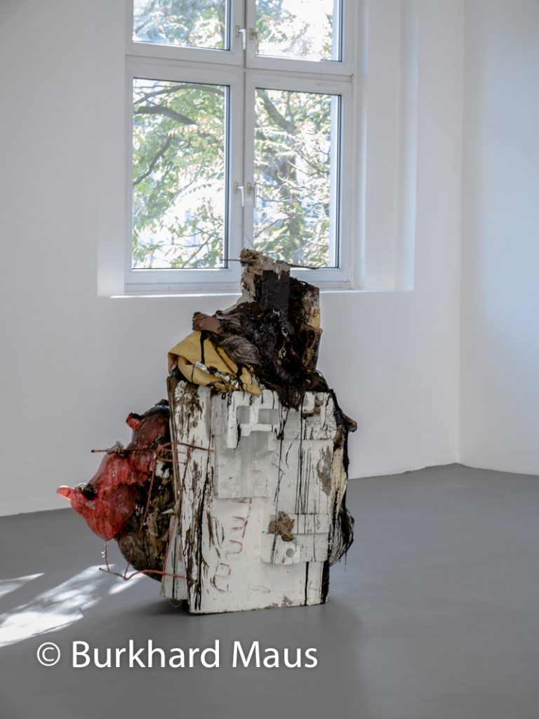 "Peter Buggenhout, ""de-titled"" - ""Gorgo #27"", Konrad Fischer Galerie"