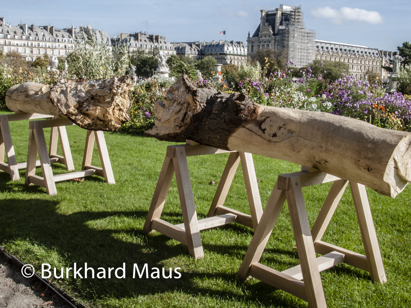 "Maria Elvira Escallón, ""Nuevas Floras"", Foire Internationale d'Art Contemporain (FIAC) 2017: Hors les murs – Jardin des Tuileries, Paris"