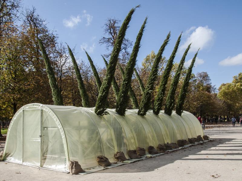 """Patrick Saytour ,""""Serre Cyprès Florence"""", Foire Internationale d'Art Contemporain (FIAC) 2017: Hors les murs – Jardin des Tuileries, Paris"""