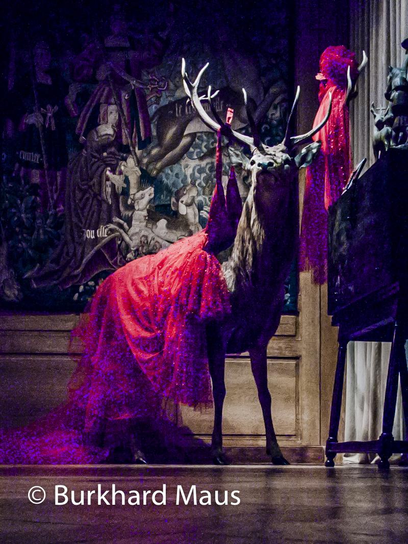 Sophie Calle, Musée de la chasse et de la nature