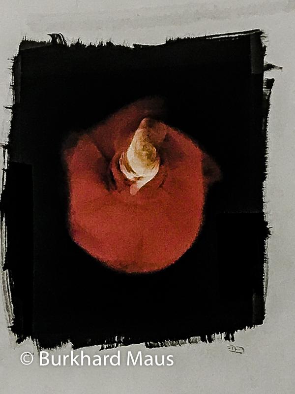 """Isabel Muñoz, """"Mevlevi"""" (détail), Galerie Esther Woerdehoff, Paris"""