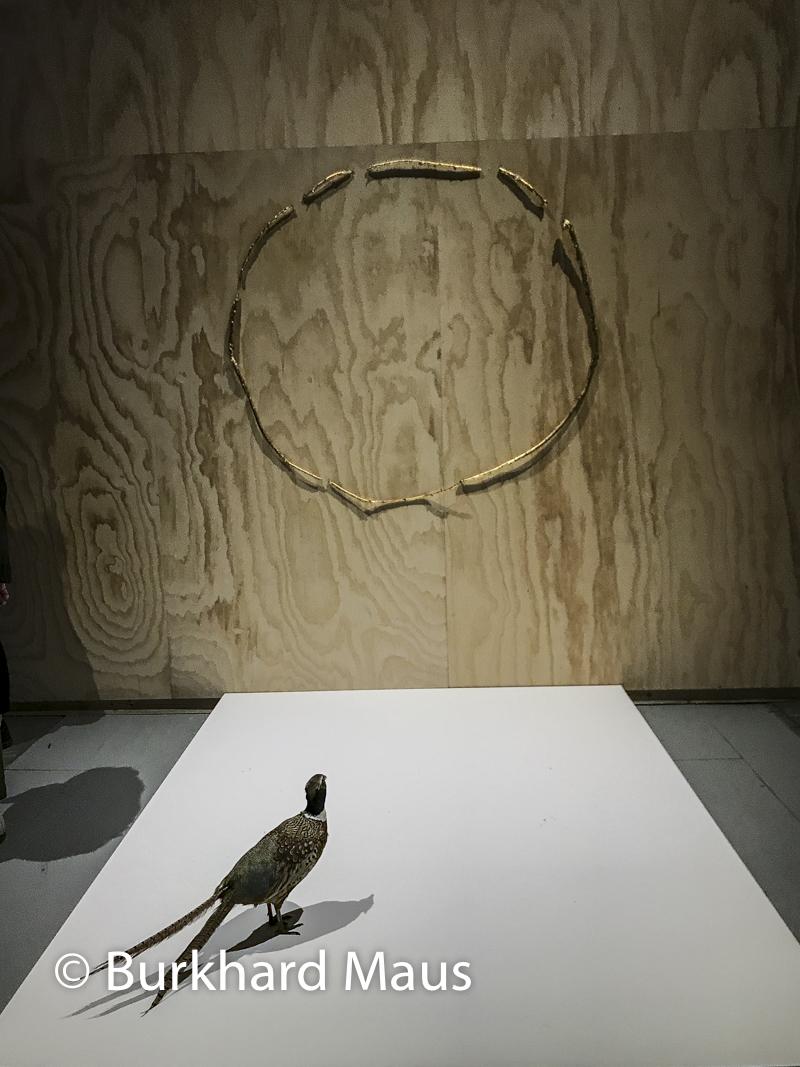 """Gabriel Rico, """"Sección aurea"""", Esposizione internazionale d'arte di Venezia"""