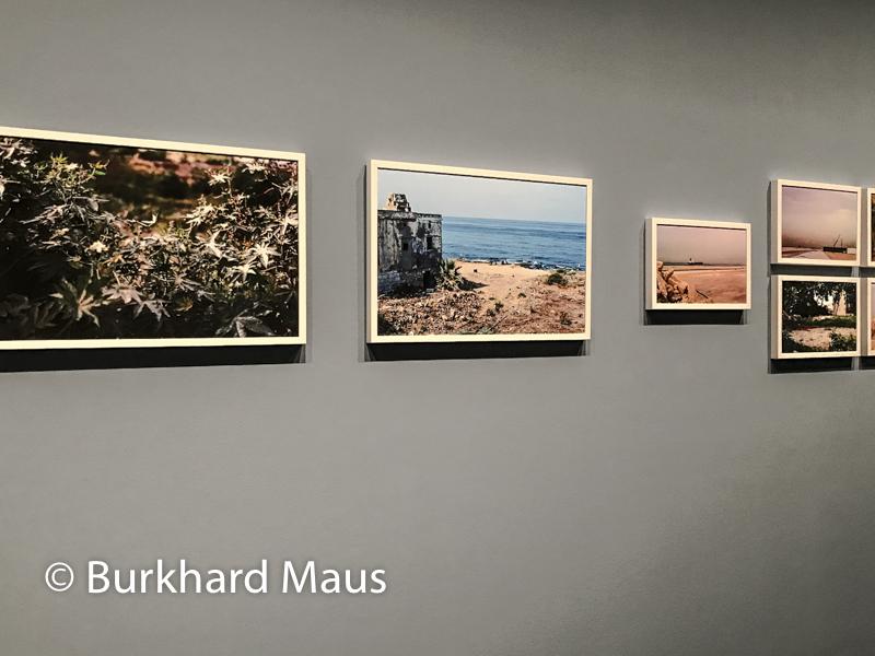 Catherine Cattaruzza, Institut du Monde Arabe, Paris, Troisième Biennale des Photographes du Monde Arabe Contemporain Arabe Contemporain