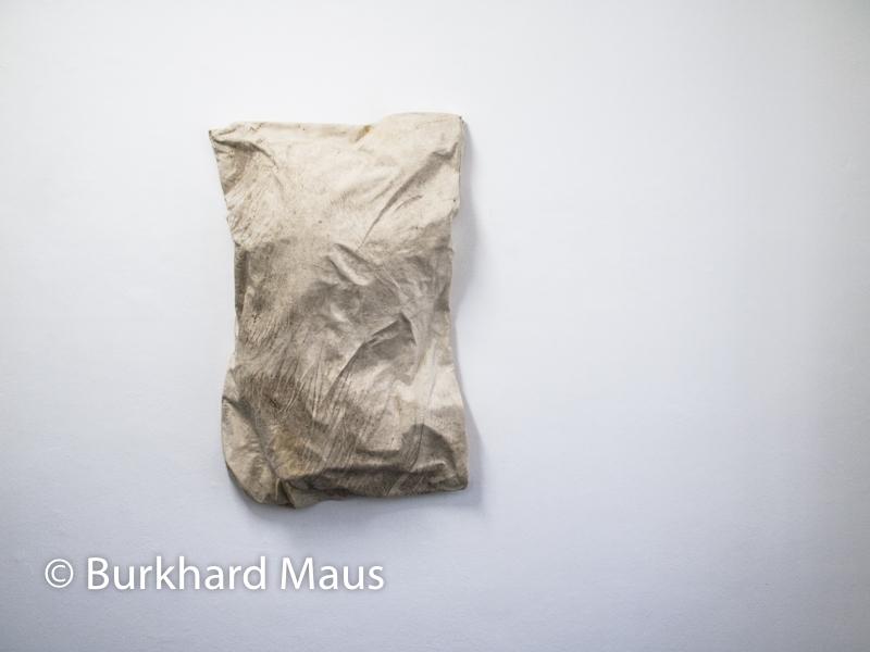 Peter Buggenhout, Konrad Fischer Gallerie