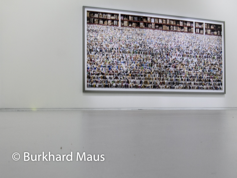 "Andreas Gursky, ""Amazon"", Jeu de Paume, Supermaché des images, Paris"