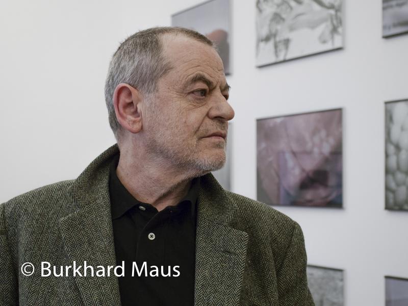 """Michael Schmidt, """"Lebensmittel"""" (détail), Museum Morsbroich, Leverkusen"""