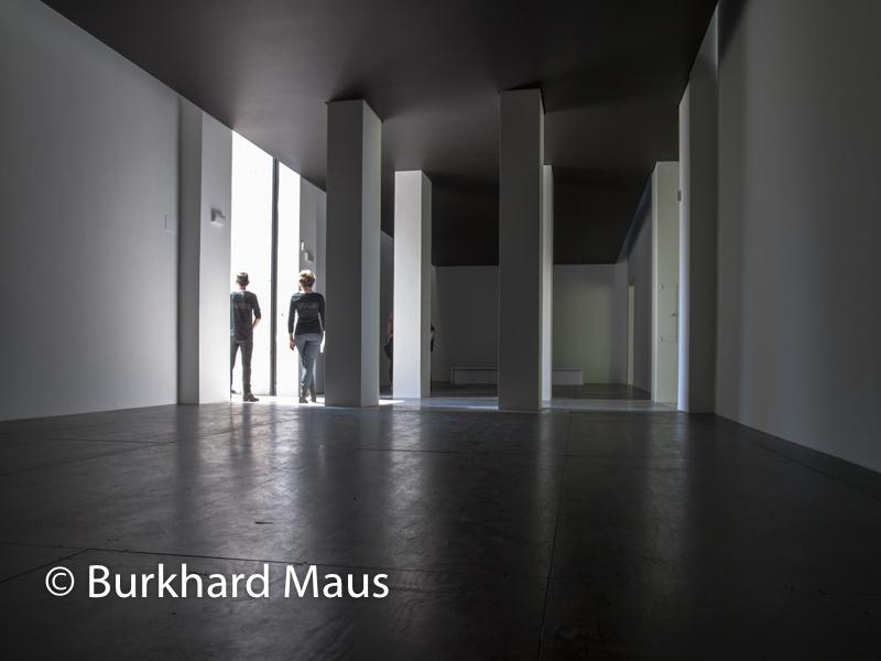 Heimo Zobernig, sans titre, (détail), Pavillon Autriche, Esposizione internazionale d'arte di Venezia