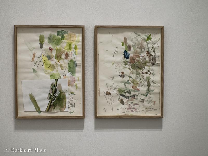 Mohamed Bourouissa,Le Déracinement, z33Huis voor Actuelle Kunst, Design & Architectuur, Hasselt