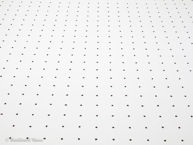 """Kapwani Kiwanga, """"Semence"""" (détail), dans """"Le Déracinement"""", z33 Huis voor Actuele Kunst, Design & Architectuur, Hasselt"""